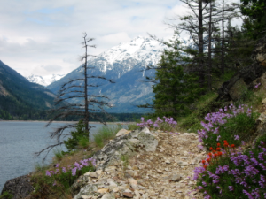 Lake Chelan: Lakeshore Trail near Stehekin